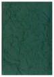 Kalendarz Olimpia zielony